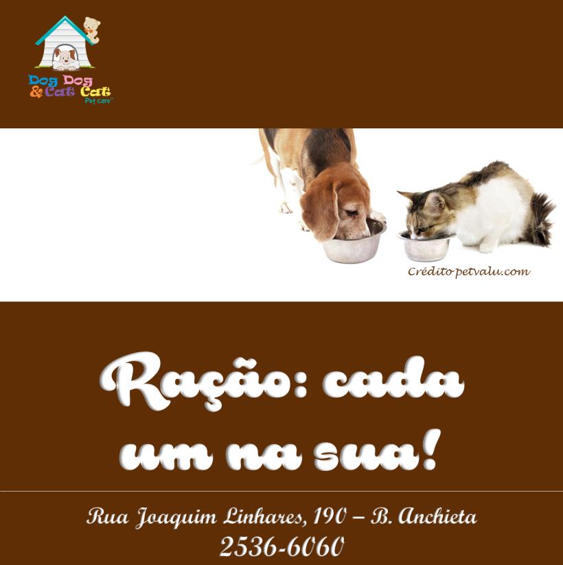 cartaz-racao-40